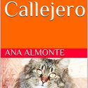 El Gato Callejero